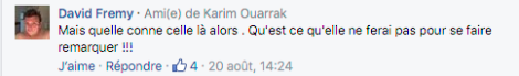 Commentaire David Fremy.png