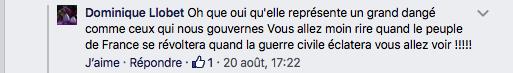 commentaire-dominique-llobet