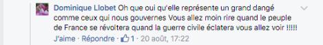Commentaire Dominique Llobet.png