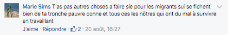 Commentaire Marie Sims.png